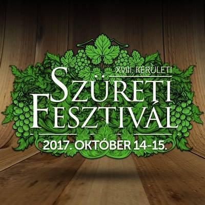 szureti-fesztival-profil-20171014-15